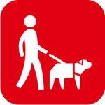盲導犬の育成